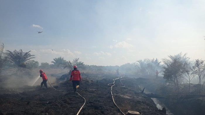 Karhutla di Riau, 3 Titik Karhutla Membara di Pekanbaru dan Kampar