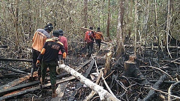 Karhutla di Riau 2020, Diguyur Hujan Semalam Karhutla di Bengkalis Padam, Asap Karhutla Hilang