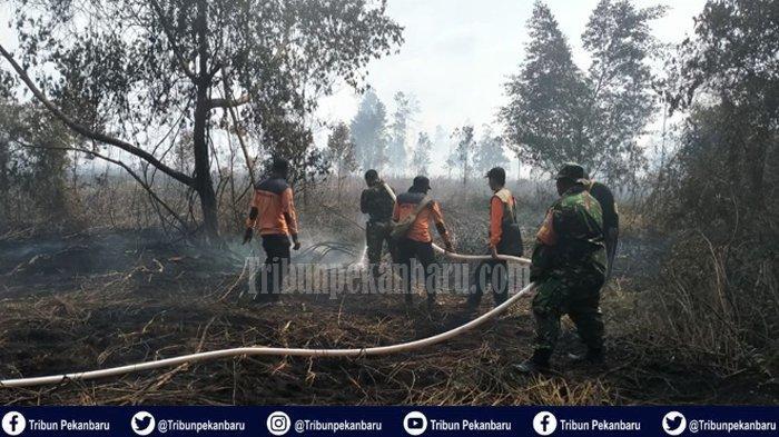 Karhutla di Dumai Sejak Awal Januari Sudah Hanguskan 20 Hektare Lahan