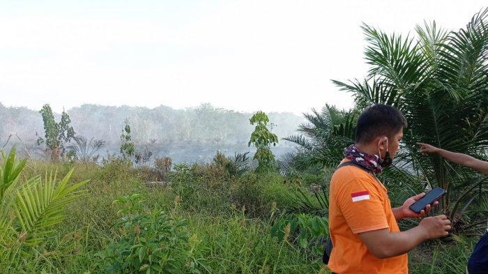 Karhutla di Riau, 5 Ha Lahan Diduga dalam Kawasan Hutan di Penyasawan Kampar Terbakar