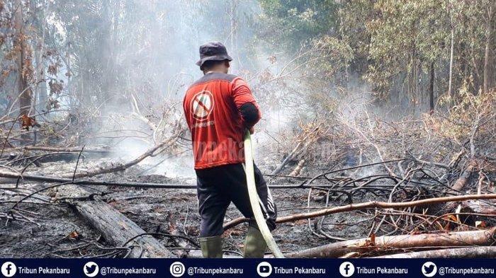 Karhutla di Riau, HELIKOPTER PT Arara Abadi Diturunkan Padamkan Api di Mengkapan Siak Riau