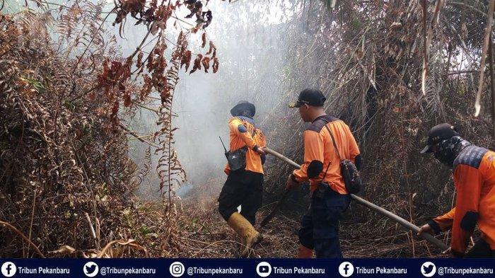 Hotspot Nihil di Pelalawan Riau, Tim Gabungan Masih Lakukan Pendinginan di Dua Lokasi Ini
