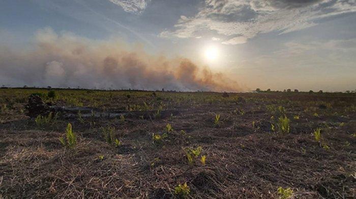 Api Bakar 5 Ha Lahan, Asap Membumbung di Angkasa Bengkalis, Ini Kesulitan Tim Padamkan Karhutla