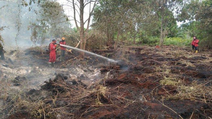 Personil gabungan memadamkan lokasi Karhutla di Kecamatan Teluk Meranti, Kamis (18/02/2021) lalu.