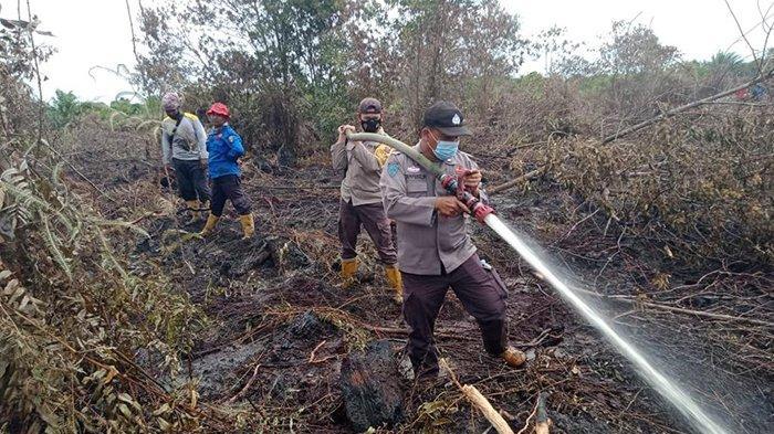 Polda Riau Tangani 6 Kasus Karhutla di Riau Sejak Awal Tahun 2021, 6 Tersangka Sudah Diamankan