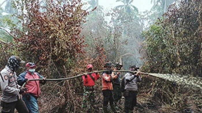 Hanguskan 3 Hektare Lahan, Inhil Segera Tetapkan Status Siaga, Karhutla Terus Terjadi