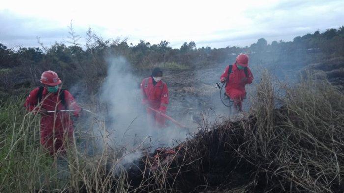 Karhutla di Kampar Menggila di Awal Oktober 2021, Segini Luas Lahan yang Hangus Terbakar