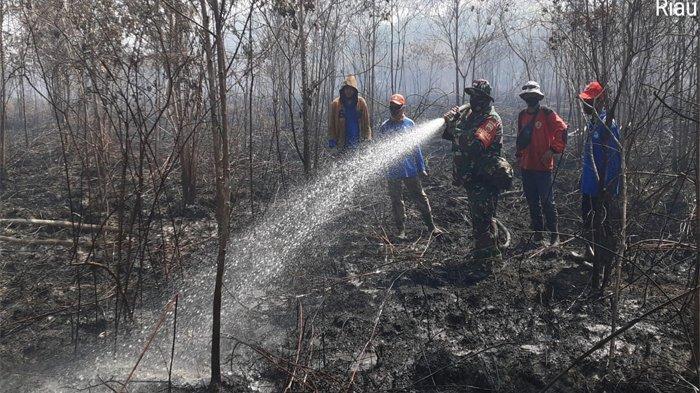 Karhutla di Sejumlah Desa Kepulauan Meranti, Api Kembali Muncul Walau Sudah Dipadamkan