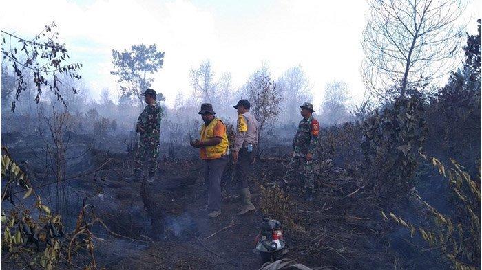 BPBD Rohul Riau Tetapkan Status Siaga Kebakaran Hutan dan Lahan