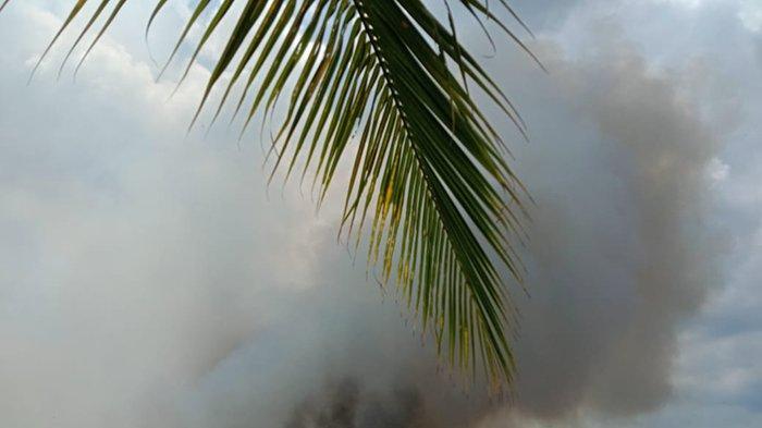 Pemadaman Karhutla di Pelalawan Terhambat Ketersediaan Air, Lokasi Titik  Api yang Sulit Ditembus