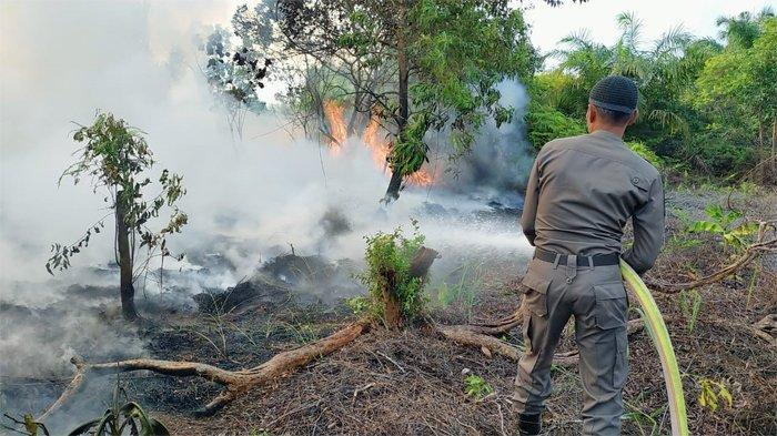 Siaga Darurat Karhutla di Riau, Termasuk 6 Kabupaten di Riau, Satgas Diminta Optimalkan Pencegahan