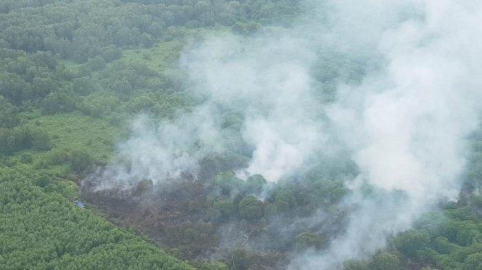 Karhutla di Kuala Kampar Muncul Sejak Sabtu, Dipadamkan Tim Darat dan Helikopter Water Bombing