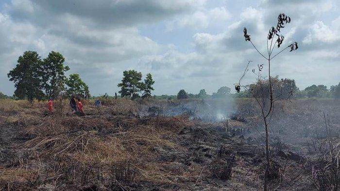 Gubernur Riau Syamsuar Ikut Rapat Pencegahan Karhutla yang Dipimpin Presiden Jokowi Siang Ini