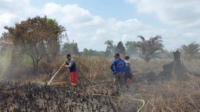 Karhutla di Pelalawan Mulai Meluas, Tim Gabungan Fokuskan Pemadaman di Tiga Titik Besar Ini