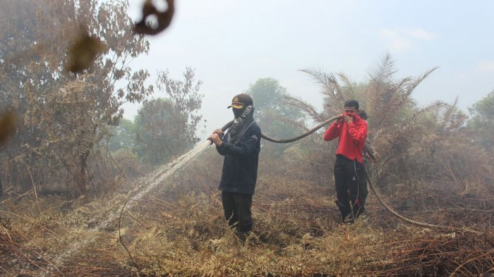 Ungkap Kebakaran Hutandan Lahan DitresKrimsus Polda Riau Kirim Tim Bantu Polres Meranti