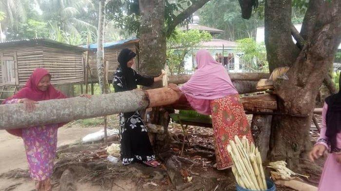 Manggelek Tobu, Tradisi Menggiling Tebu yang Hampir Hilang Ikut Meriahkan Idul Adha di Kuok
