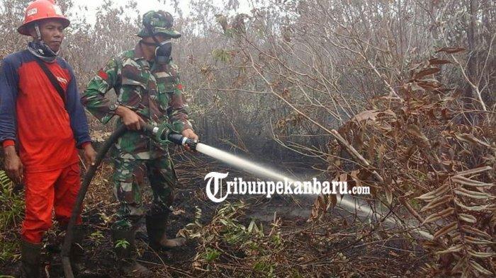 Bantu Tanggulangi Karhutla Riau, 200 Pasukan Kostrad Dijadwalkan Tiba di Pekanbaru Senin Besok