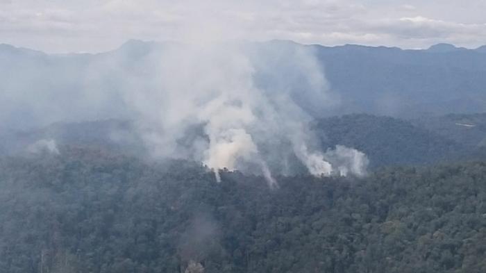 Butuh Bantuan dari Udara, Petugas Darat Kewalahan Padam Api di Lahan Perbukitan Rohul dan Kampar