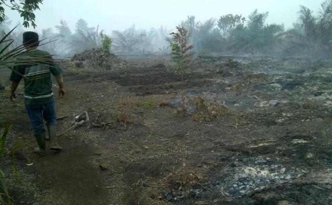 Asap Hitam Mengepul dari Pabrik Kelapa Sawit PT BIM, Masyarakat Kampung Dayun Khawatir Kesehatan