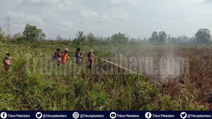 Mengaku Cuma Diperintah, AM Terancam Penjara 10 Tahun Akibat Membakar Lahan di Dumai Riau