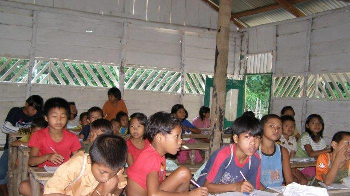 Kisah Sekolah Marjinal Dusun Datai, Perjuangan Agar Anak-anak Pedalaman TNBT Raih Pendidikan(Part I)