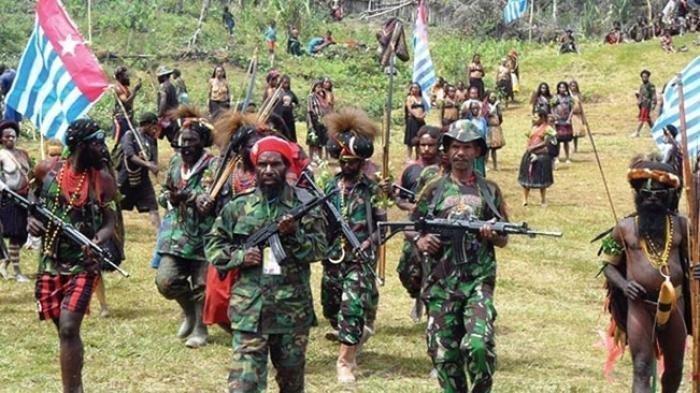 KKB Papua Sah Menyandang Gelar Teroris Pasca Jokowi Murka, TPNPB Dan OPM Bakal Nyungsep