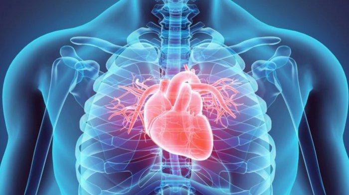 Bukan Serangan Jantung, Didi Kempot Meninggal Dunia Karena Henti Jantung, Apa Beda dan Gejalanya?