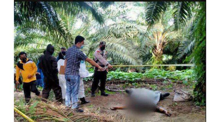 Warga Bengkalis Dilaporkan Hilang Kamis Pekan Lalu, Selasa Jasad Ditemukan di Perkebunan Sawit