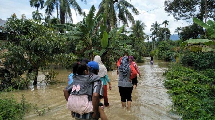 7 Kecamatan di Pasaman Dilanda Banjir, Ratusan Rumah Warga Terendam