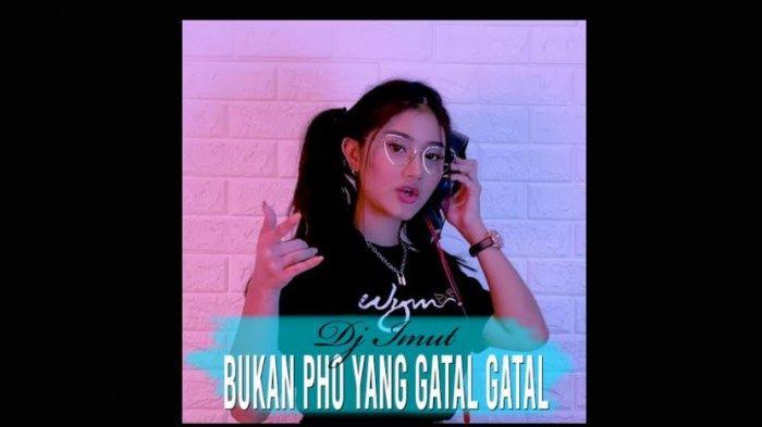 Lagu TikTok Viral 2021, Bukan Pho yang Gatal Remix DJ Imut, Download di Di Youtube Music