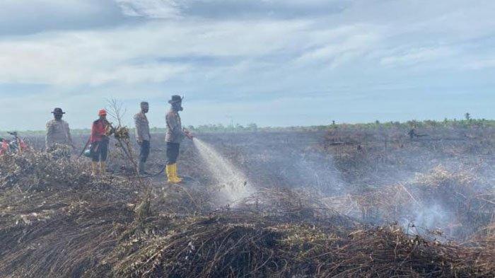 Puluhan Titik Panas Terpantau di Riau, Paling Banyak Terdapat di Rokan Hilir