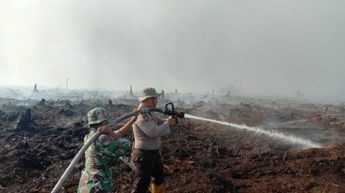 Ini 4 Arahan Presiden Jokowi Untuk Pengendalian Karhutla Termasuk di Riau