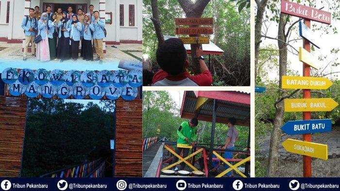 Mahasiswa Kukerta Universitas Riau Buat Spot Foto dan Bangun Ekowisata Mangrove di Desa Bukit Batu