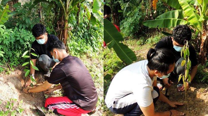 Mahasiswa Kukerta UNRI Lakukan Pembagian dan Penanaman 1000 Bibit Buah Produktif di Desa Padang Luas