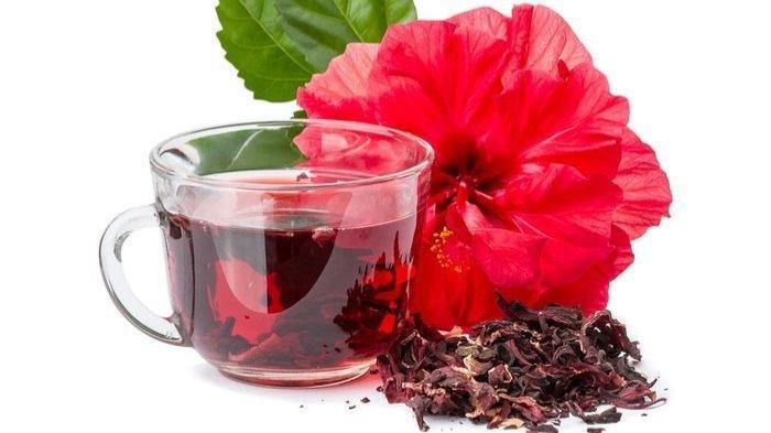 Manfaat Bunga Raya Atau Kembang Sepatu Bagi Kesehatan, Tak Hanya Sebagai Obat Demam