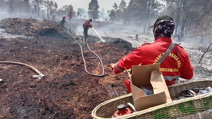 4 Ha Lahan Semak Terbakar di Bunsur,Kerahkan Helikopter Superpuma Water Bombing Karhutla di Siak