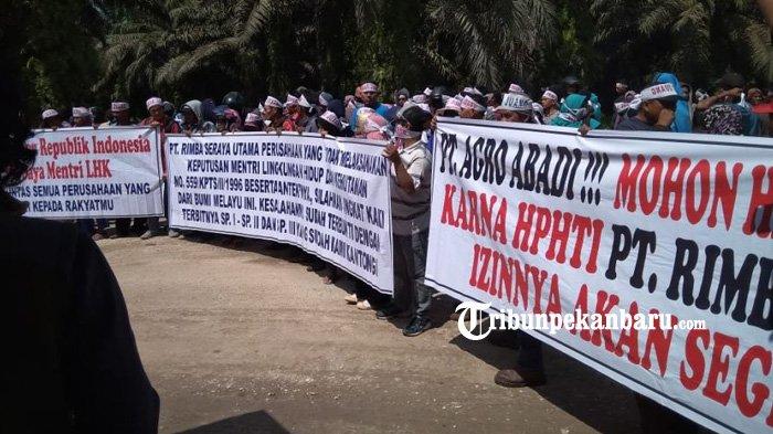 Masyarakat Tuding PT Agro Abadi Alih Fungsi Lahan HTI, Juswari: Perusahaan Bisa Dipidana