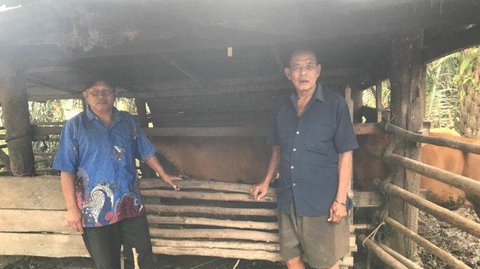 Wagyo Masyarakat Batu Gajah Tapung Kampar Penerima bantuan kemitraan DMPA dari salah satu Pemasok APP Sinar Mas PT PSPI Distrik Petapahan