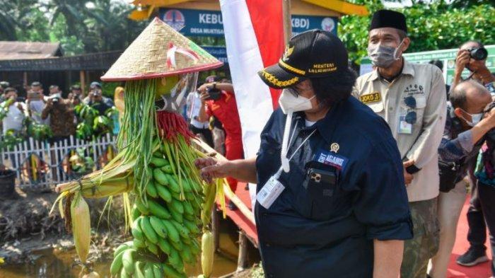 Menteri LHK Siti Nurbaya Akan Kunjungan Kerja ke Dumai, Ini Agendanya