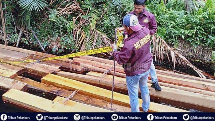 MISTERI Pemilik 211 Kayu Balak yang Diamankan Polres Kepulauan Meranti, Diduga Hasil Ilegal Logging