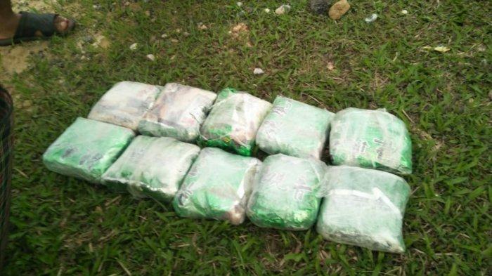 Pasutri Tertangkap Bawa Narkoba 10 Kg di Siak Diduga Jaringan Internasional Malaysia