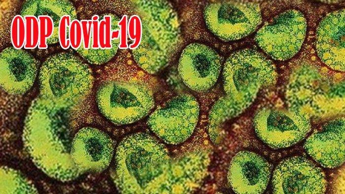 15 ODP Covid-19 di Kuansing yang Alami Batuk dan Demam Pulang dari Jakarta dan Bogor serta Malaysia