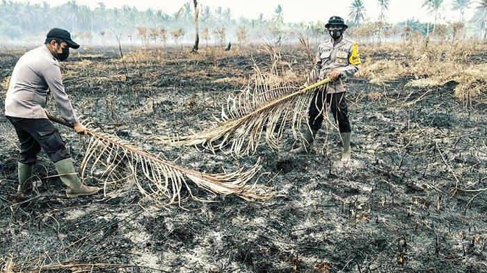 Petugas melakukan pendinginan di lahan gambut yang terbakar.
