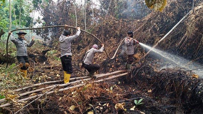 Dari Awal Tahun 2020, Luas Kebakaran Lahan di Riau Mencapai 1.155 hektare