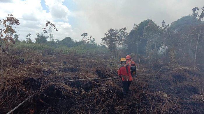 Bengkalis Tetapkan Status Siaga Darurat Karhutla, Sepekan Terakhir 18 Hektare Lahan Terbakar