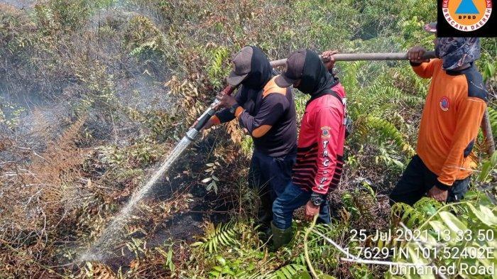 2 Hektare Lahan Gambut Terbakar,Minggu Siang,Petugas Masih Berjibaku Padamkan Karhutla di Bengkalis