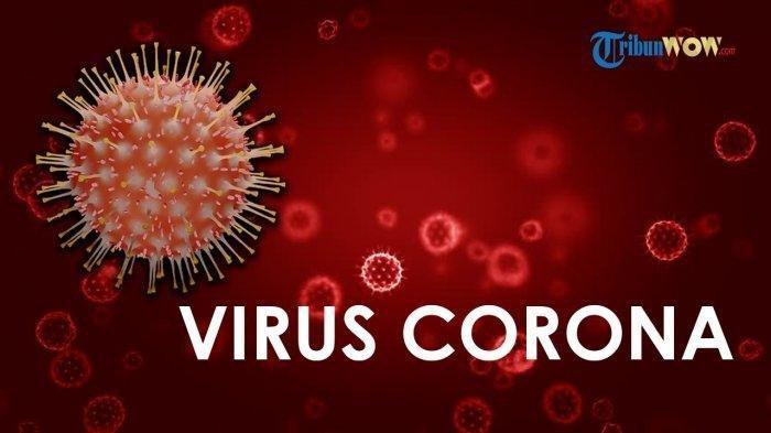 Ada Jarum, Wujud Asli Virus Corona Hasil Pembesaran Mikroskop Ilmuwan India, Terungkap Fakta Baru