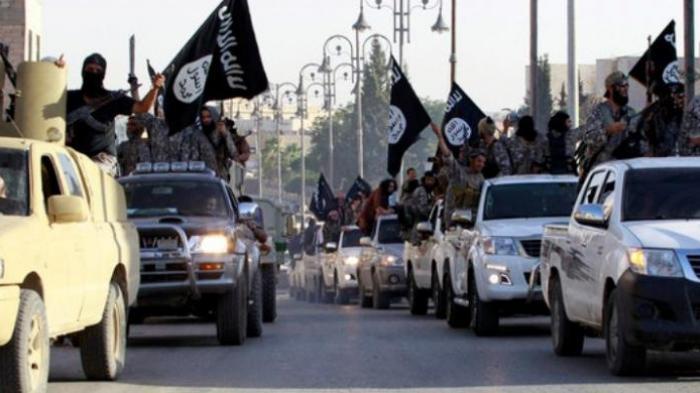Kenapa ISIS Tak Gempur Israel? Ternyata. . .Berikut Data Faktanya