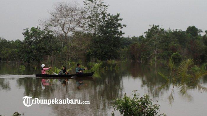 Waspada Aliran Sungai Kampar, Siang Ini 4 Pintu Pelimpahan Waduk PLTA Dibuka Setinggi 50 Cm