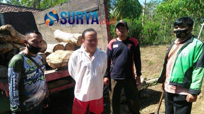Sia-sia Jinap Tiarap di Kandang Kambing, Pencuri Kayu Jati Pasrah Ditangkap Polhut
